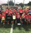 第2回 東京・清瀬ニューイヤーカップ2018       優勝!!